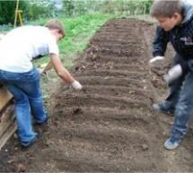 Otvoritev šolskih vrtov