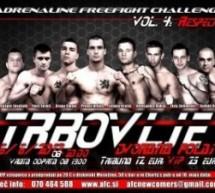 Trbovlje bo prestolnica vrhunskega MMA-ja