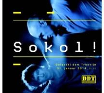 Plesni performans Iztoka Kovača in Janeza Janše: Sokol! (produkcija Zavod EN-KNAP)