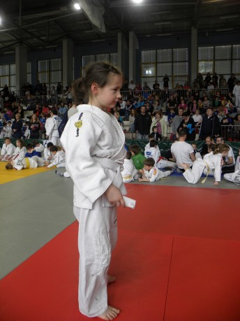 Judo-pokal Ptuja (2)