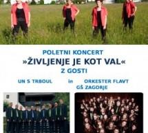 Poletni koncert Vokalne skupine Plavica