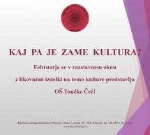 Dogajanje v Knjižnici Toneta Seliškarja v februarju