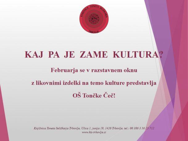 KTS Trbovlje, razstava v izložbenem oknu, februar 2016