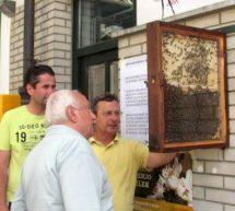 Dan odprtih vrat tudi pri trboveljskih čebelarjih
