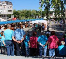 Največ nevladnikov zaposluje v Trbovljah
