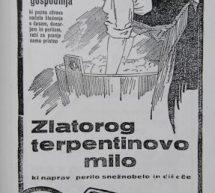 Vloga in podoba žensk v trboveljskih rudarskih družinah med in po drugi svetovni vojni