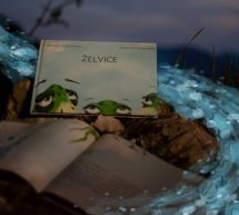 Knjiga Želvice dosegla svoj namen