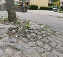 Začetek obnove promenade na Sallauminesu